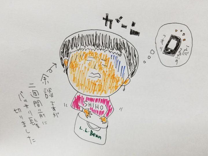 \ we love 12月1日(金)  忘れ物 /