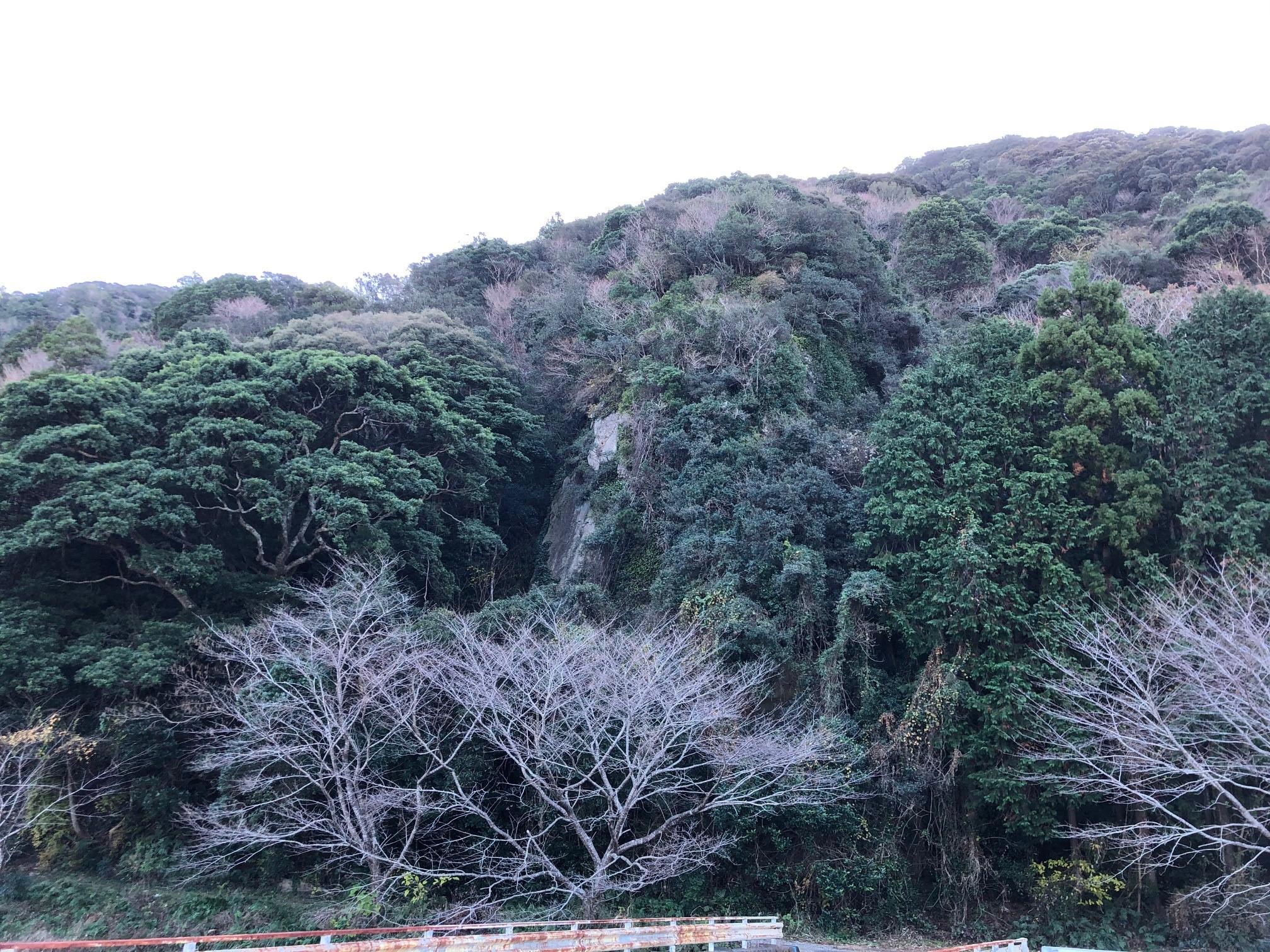 特別番組『熊野水軍の城〜史跡 安宅氏城館跡を訪ねて〜』